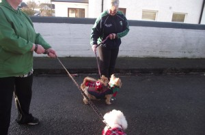 Fitness with Emmett- Offaly Sports Partnership